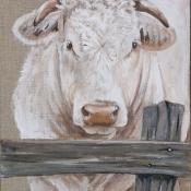 P-Grisard-vache-charollaise-peinte-sur-lin